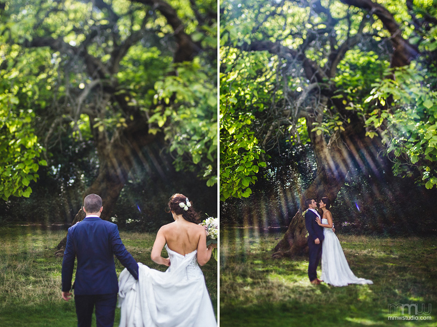 wedding session under the tree