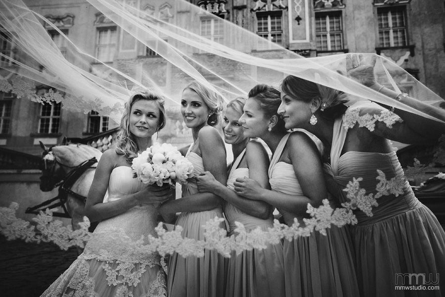 gorgeous bride with bridesmaids portrait