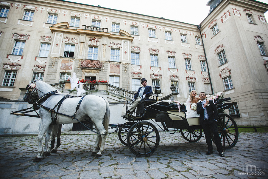 wedding at the castle, bride and groom with carriage